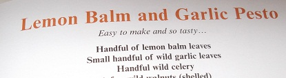 And finally a recipe to use our huge patch of lemonbalm