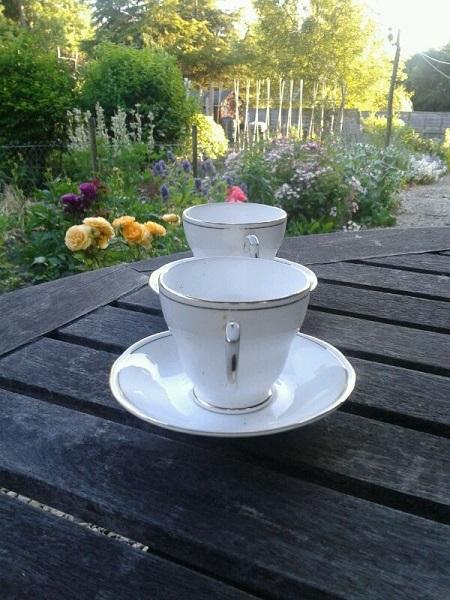 Take a teacup