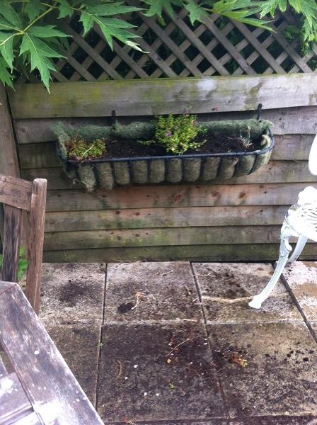 gardening 4