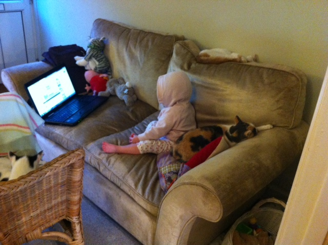 The youth of today!! Lizzie watching a spot of peppa pig on our new sofa, surrounded by muddy cats!